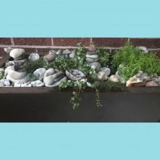 Business of Vintage requires rest and relaxation, this is my rock garden.